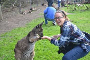 We still keep in touch. Kangaroo on Phillip's Island